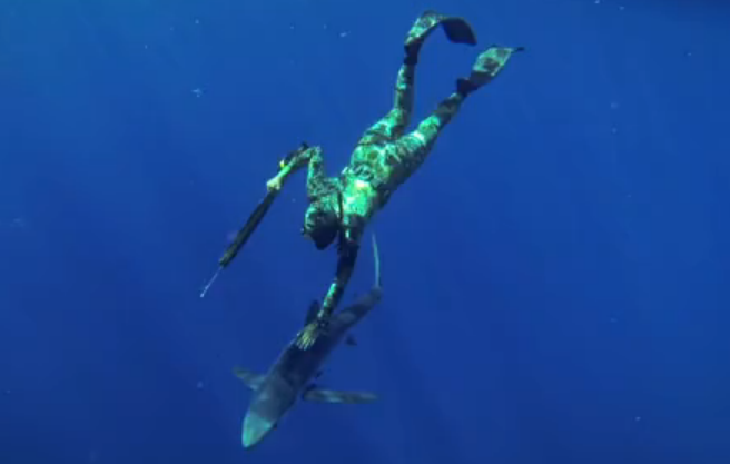 spear-fishing-video